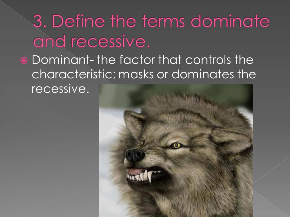 3. Define the terms dominate and recessive.