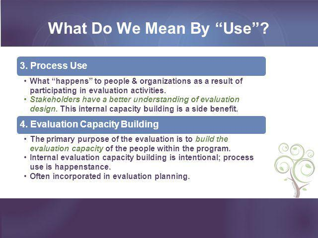 What Do We Mean By Use 4. Evaluation Capacity Building
