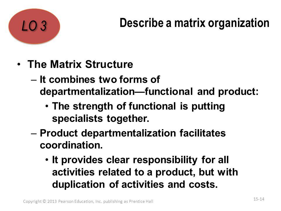 Describe a matrix organization