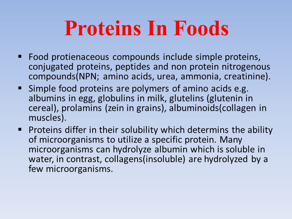 Proteins In Foods