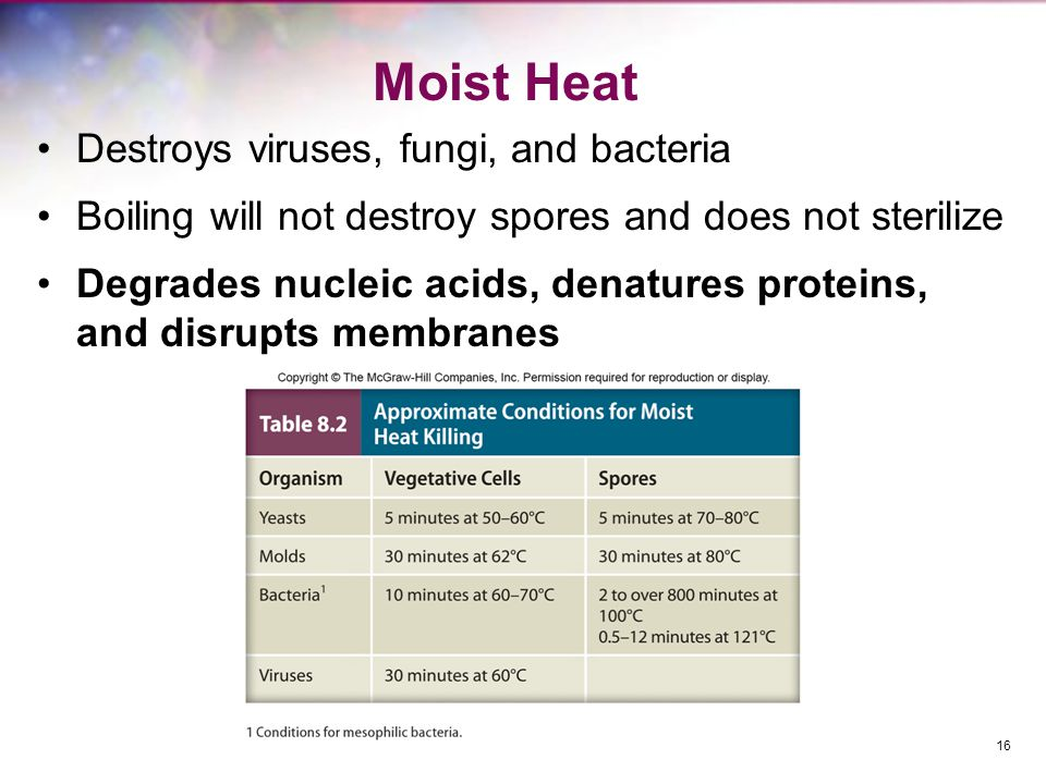 Moist Heat Destroys viruses, fungi, and bacteria