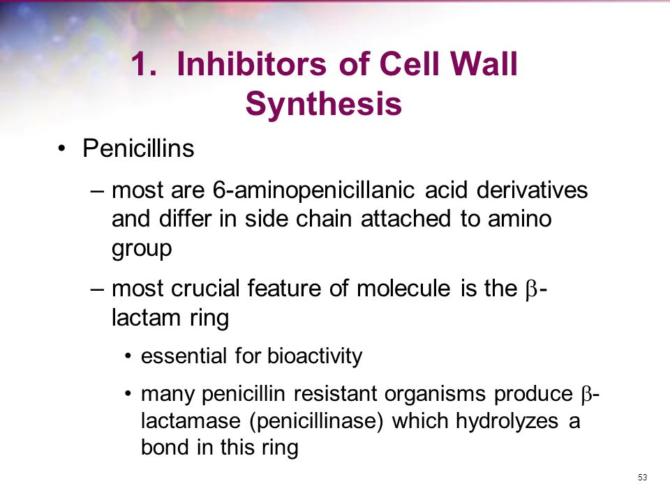 1. Inhibitors of Cell Wall Synthesis