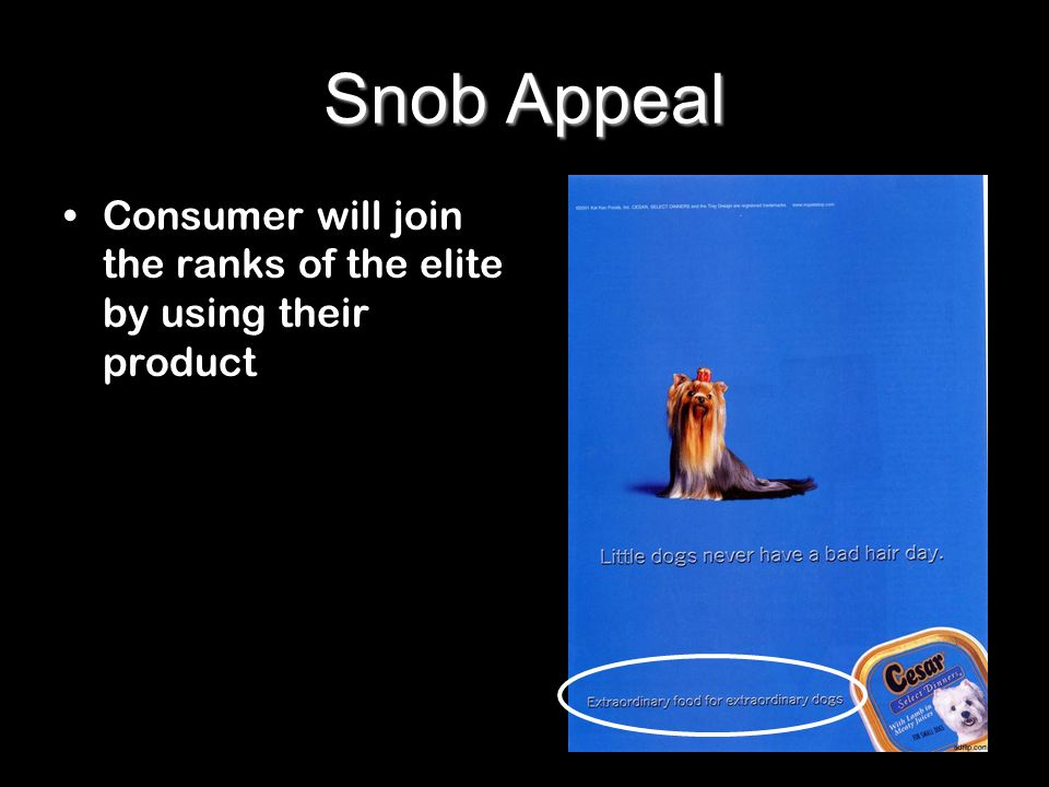 Snob Appeal Consumer will join the ranks of the elite by using their product