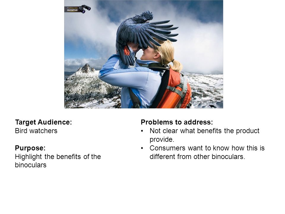Target Audience: Bird watchers. Purpose: Highlight the benefits of the binoculars. Problems to address: