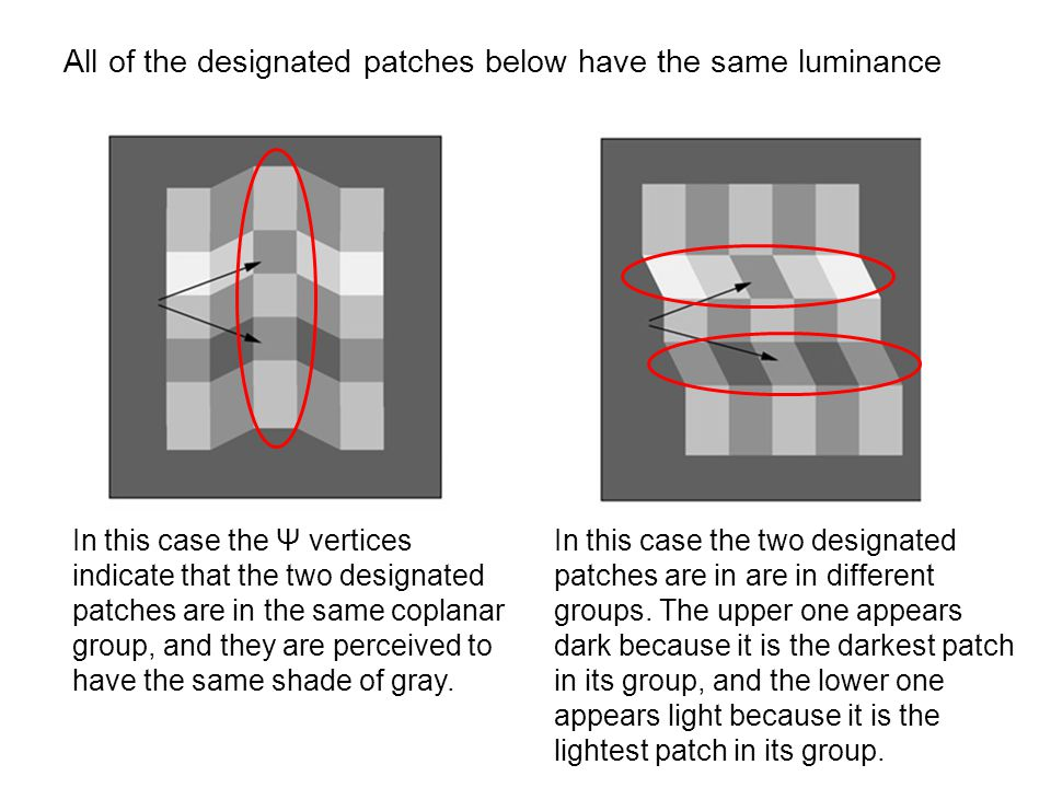 All of the designated patches below have the same luminance