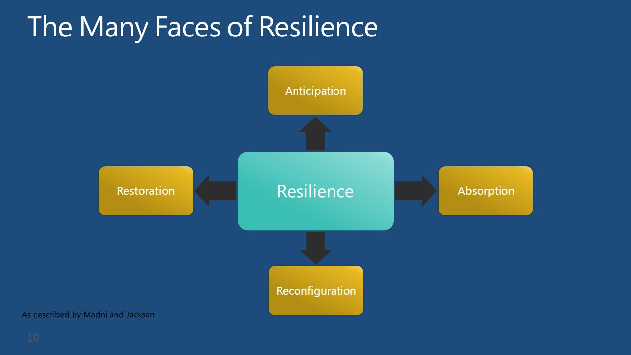 The Many Faces of Resilience