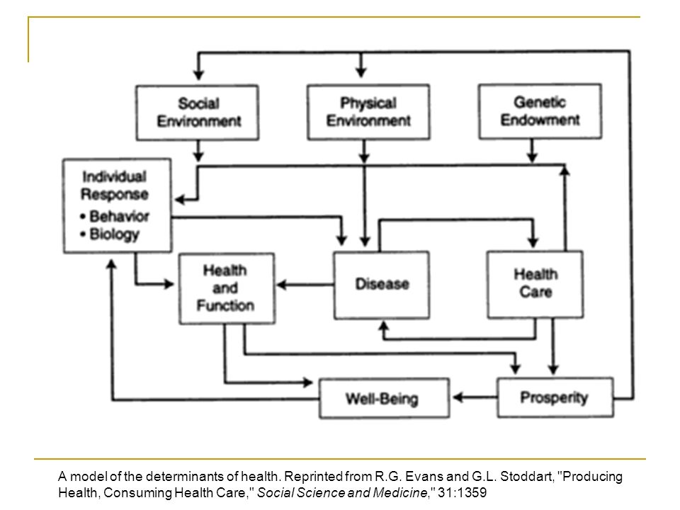 A model of the determinants of health. Reprinted from R.G.