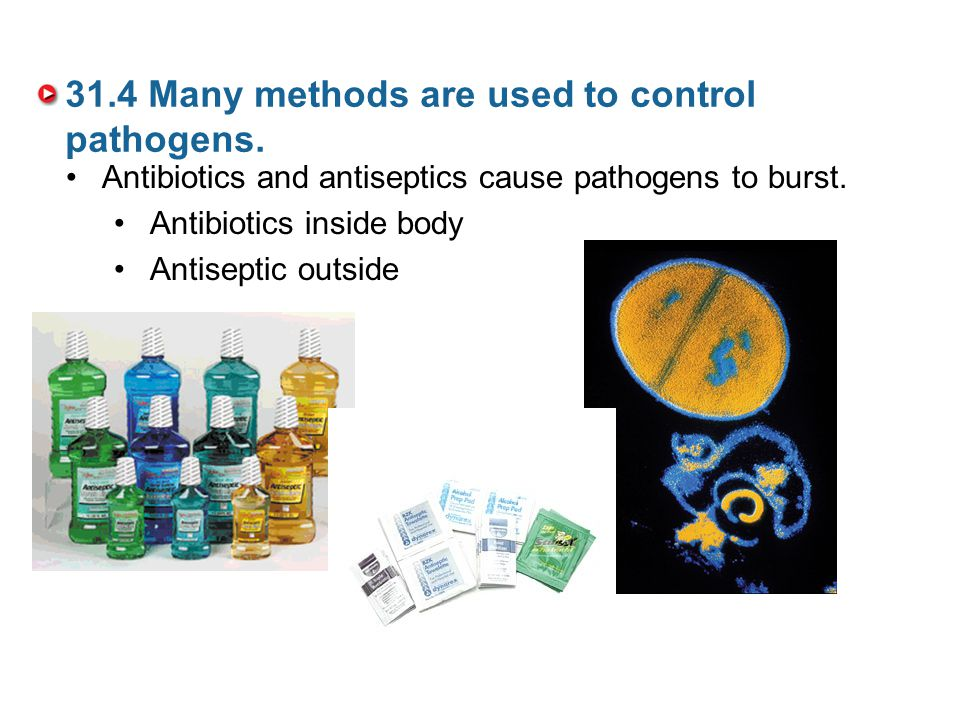 31.4 Many methods are used to control pathogens.