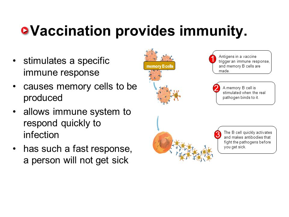 Vaccination provides immunity.