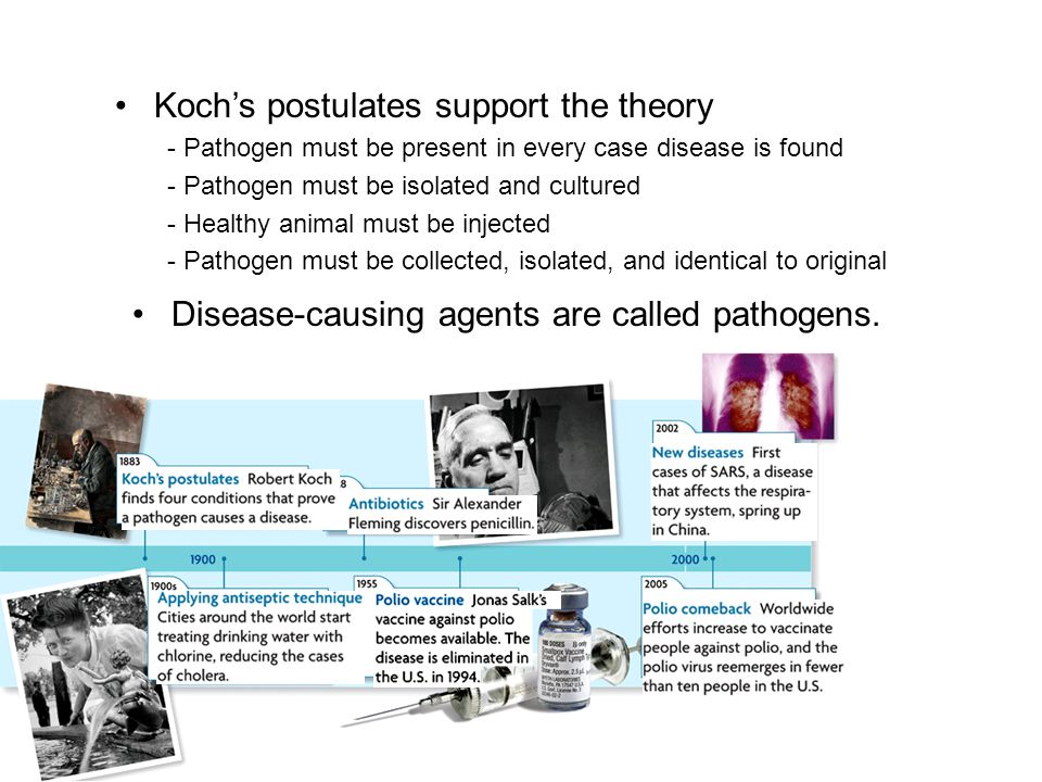 Koch's postulates support the theory