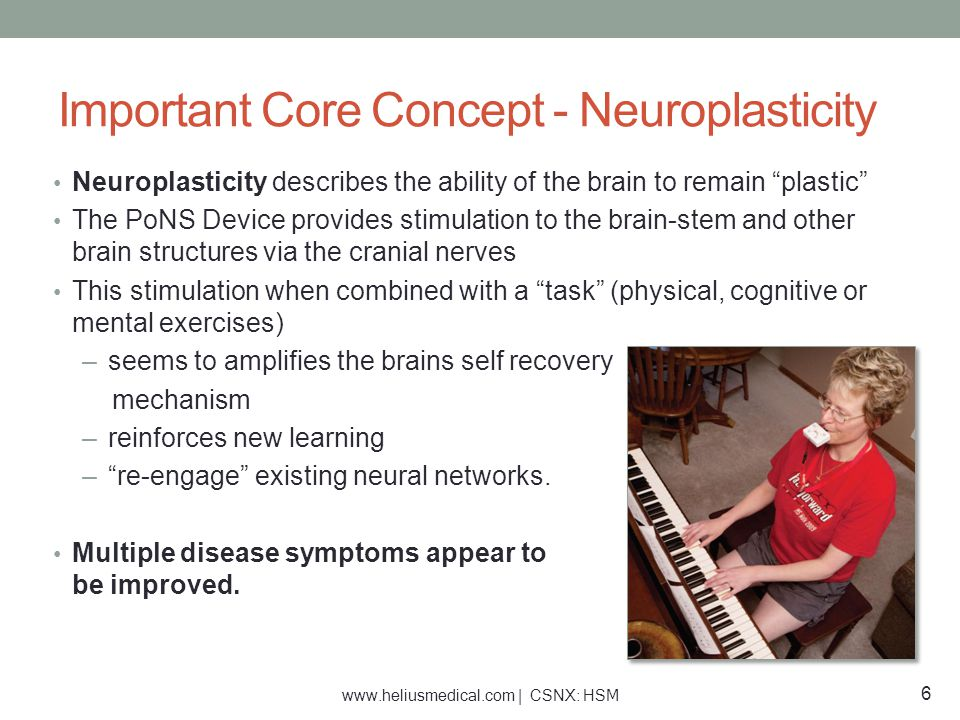 Important Core Concept - Neuroplasticity