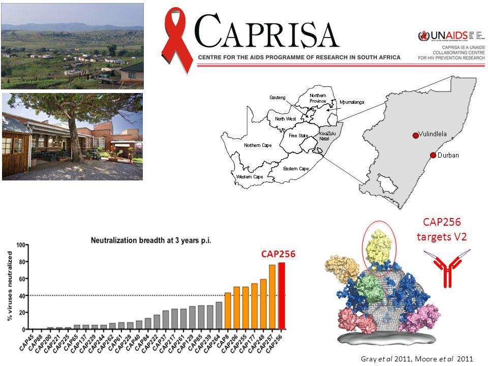 CAP256 targets V2 CAP256 Gray et al 2011, Moore et al 2011