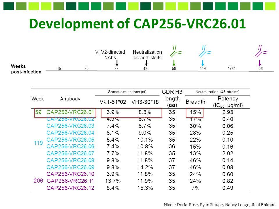 Development of CAP256-VRC26.01