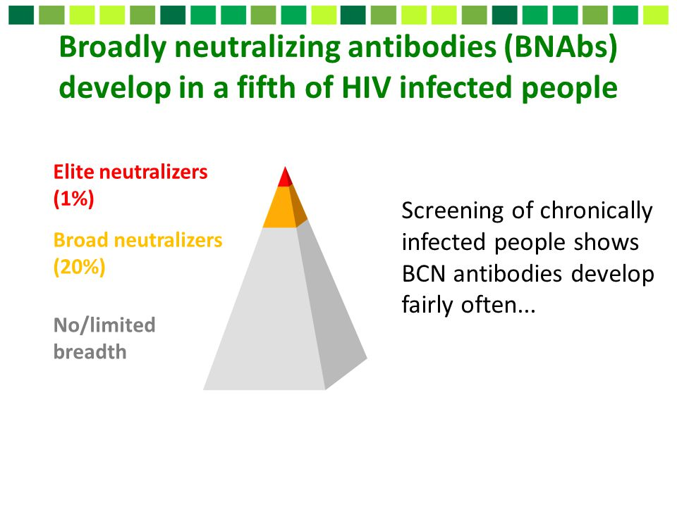 Broadly neutralizing antibodies (BNAbs) develop in a fifth of HIV infected people