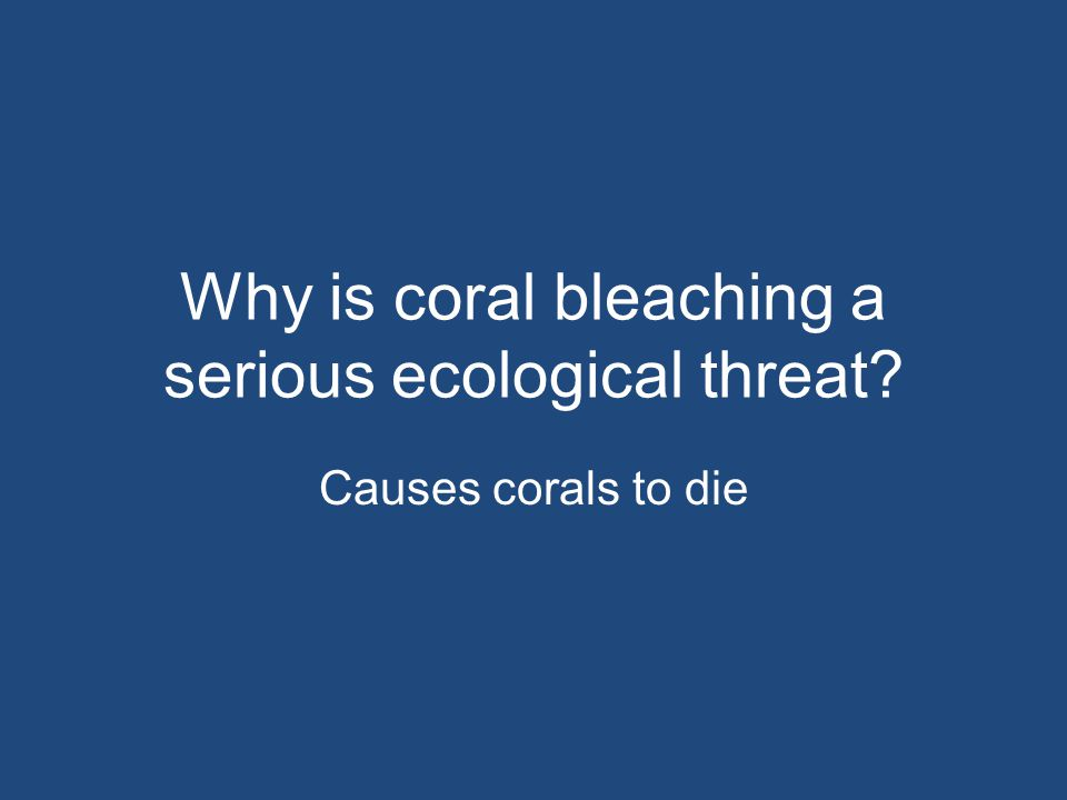 Why is coral bleaching a serious ecological threat