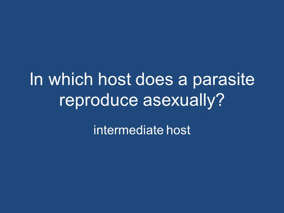 In which host does a parasite reproduce asexually