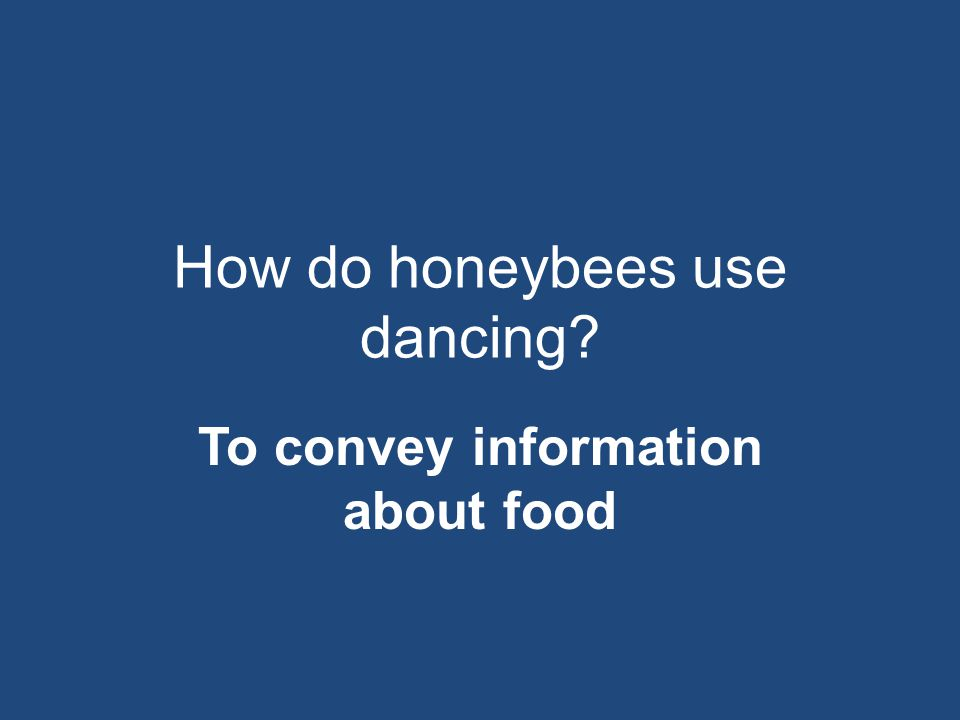 How do honeybees use dancing
