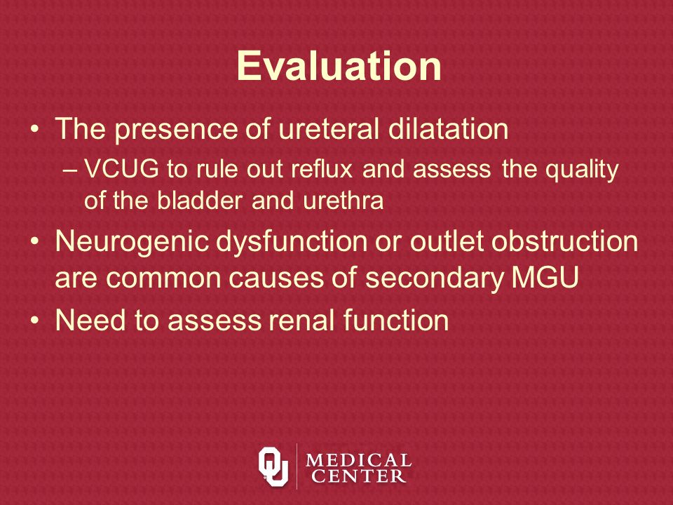 Evaluation The presence of ureteral dilatation