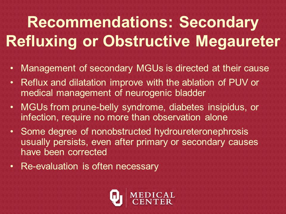 Recommendations: Secondary Refluxing or Obstructive Megaureter