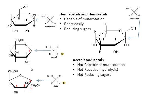 Hemiacetals and Hemiketals