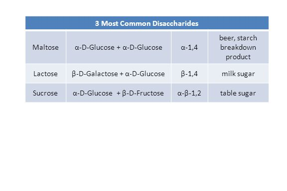 3 Most Common Disaccharides