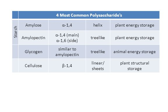 4 Most Common Polysaccharide s