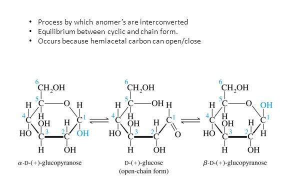 Process by which anomer's are interconverted