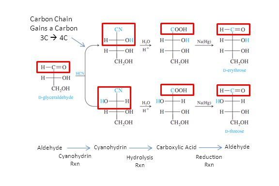 Carbon Chain Gains a Carbon 3C  4C Cyanohydrin Rxn Aldehyde Reduction