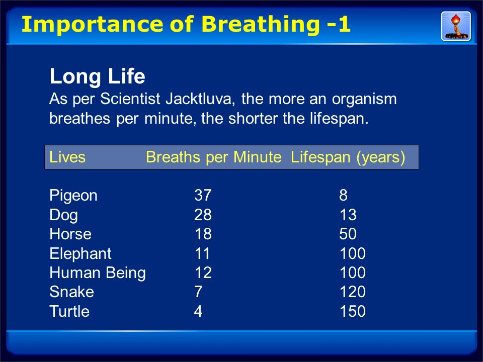 Importance of Breathing -1