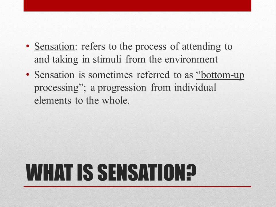 Sensation: refers to the process of attending to and taking in stimuli from the environment