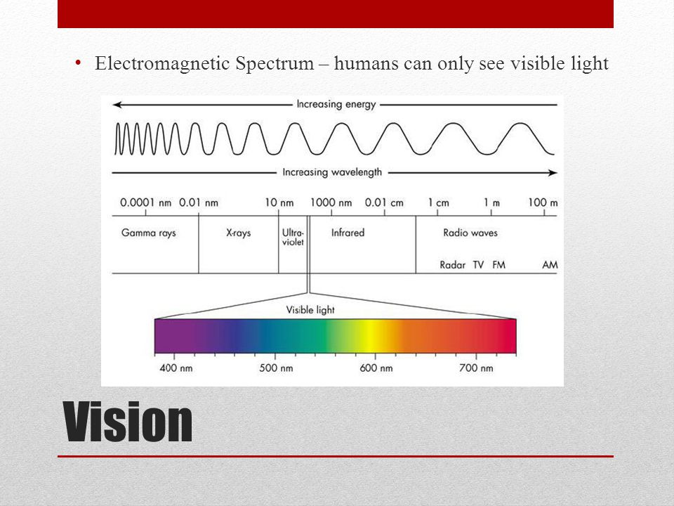 Electromagnetic Spectrum – humans can only see visible light