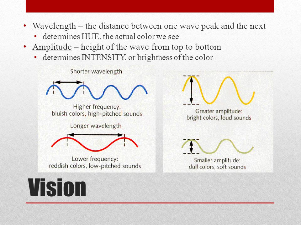 Vision Wavelength – the distance between one wave peak and the next