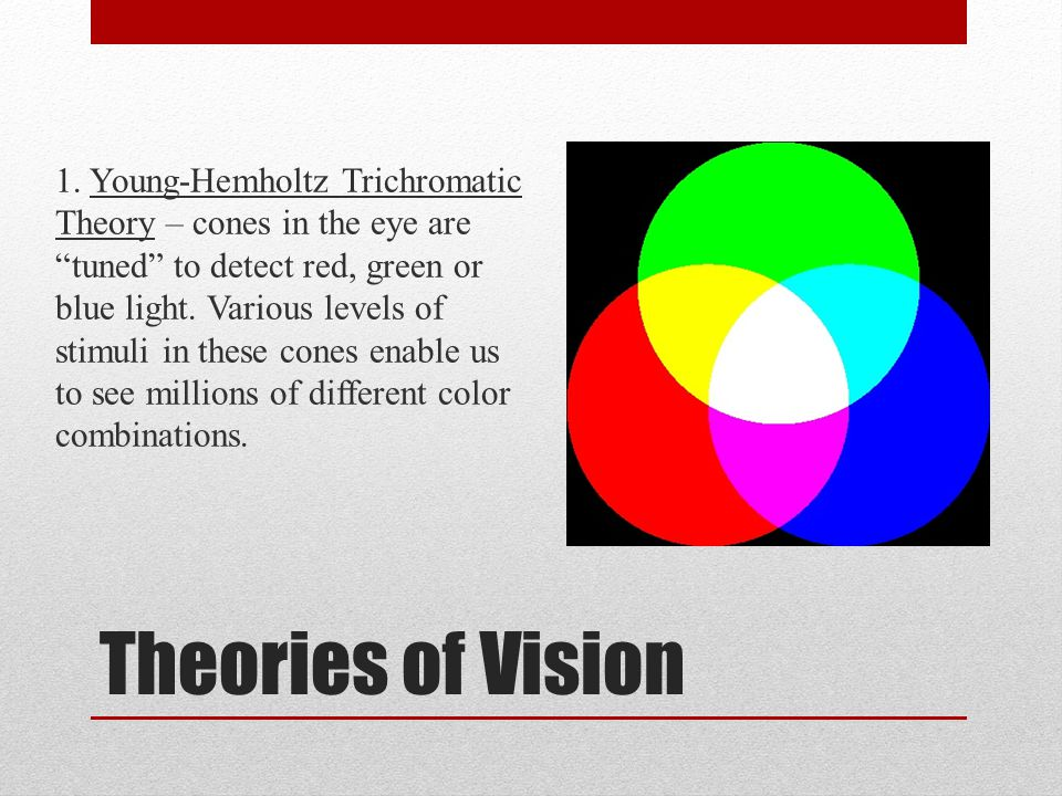 1. Young-Hemholtz Trichromatic Theory – cones in the eye are tuned to detect red, green or blue light. Various levels of stimuli in these cones enable us to see millions of different color combinations.