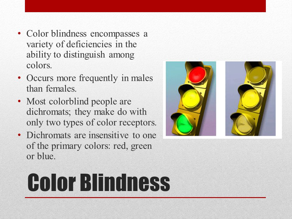 Color blindness encompasses a variety of deficiencies in the ability to distinguish among colors.