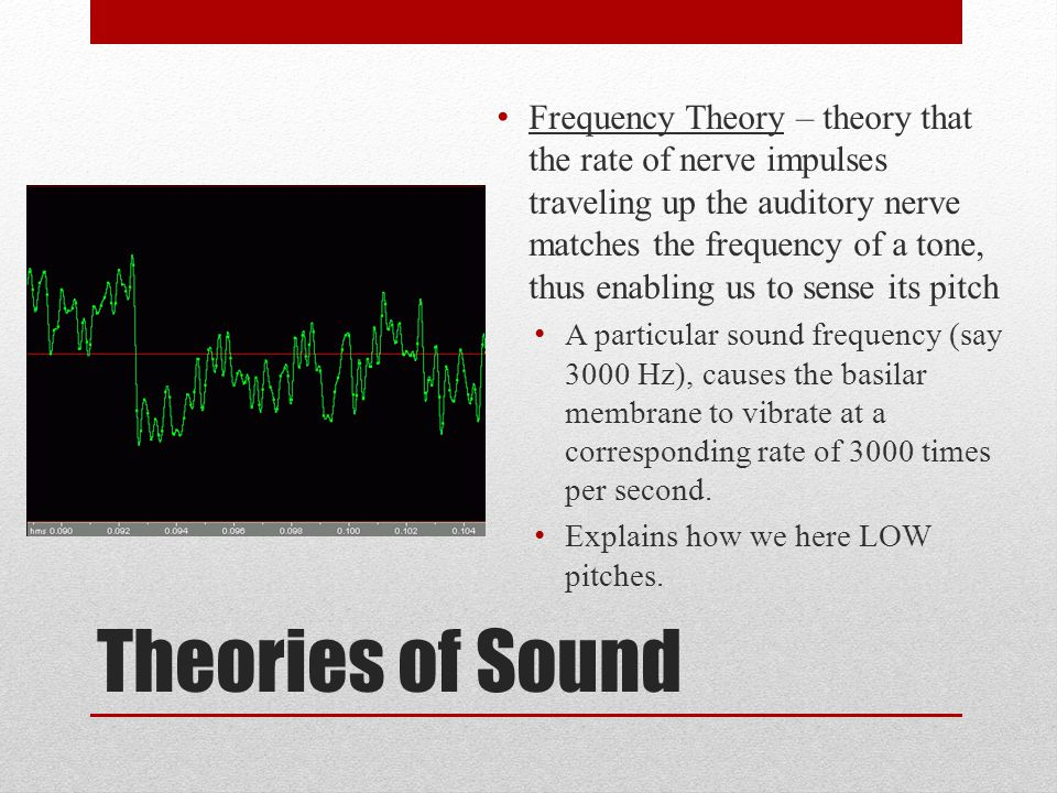 Frequency Theory – theory that the rate of nerve impulses traveling up the auditory nerve matches the frequency of a tone, thus enabling us to sense its pitch
