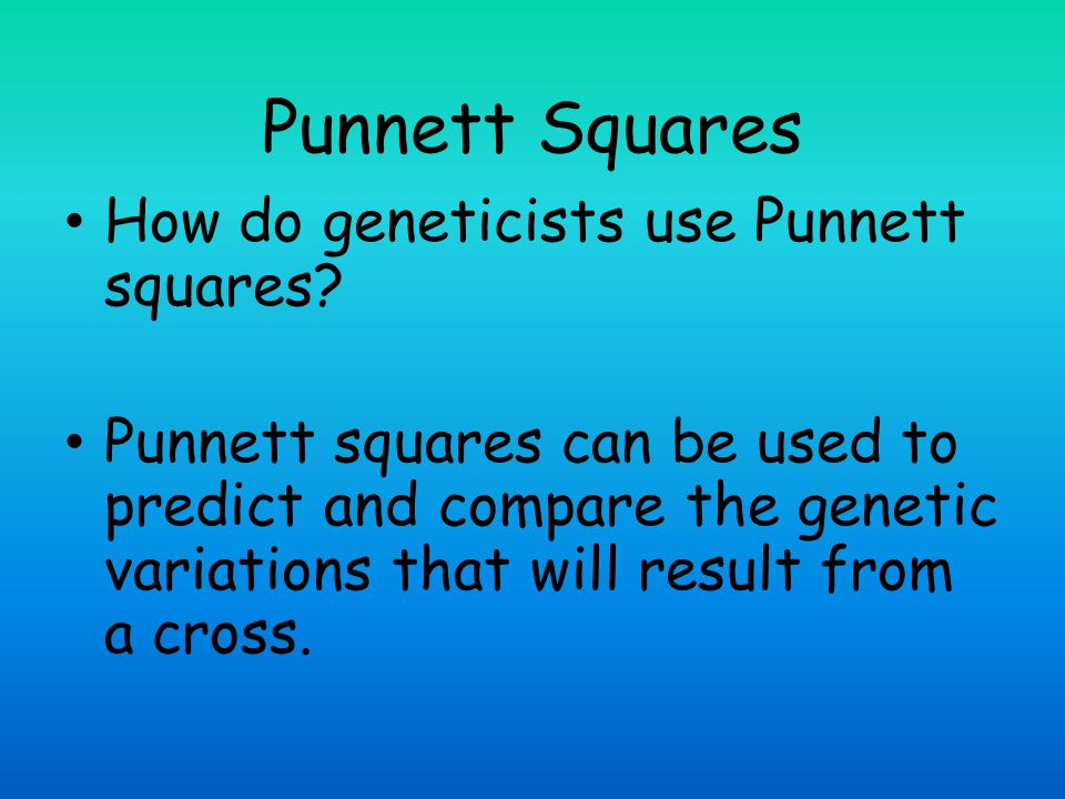 How do geneticists use Punnett squares
