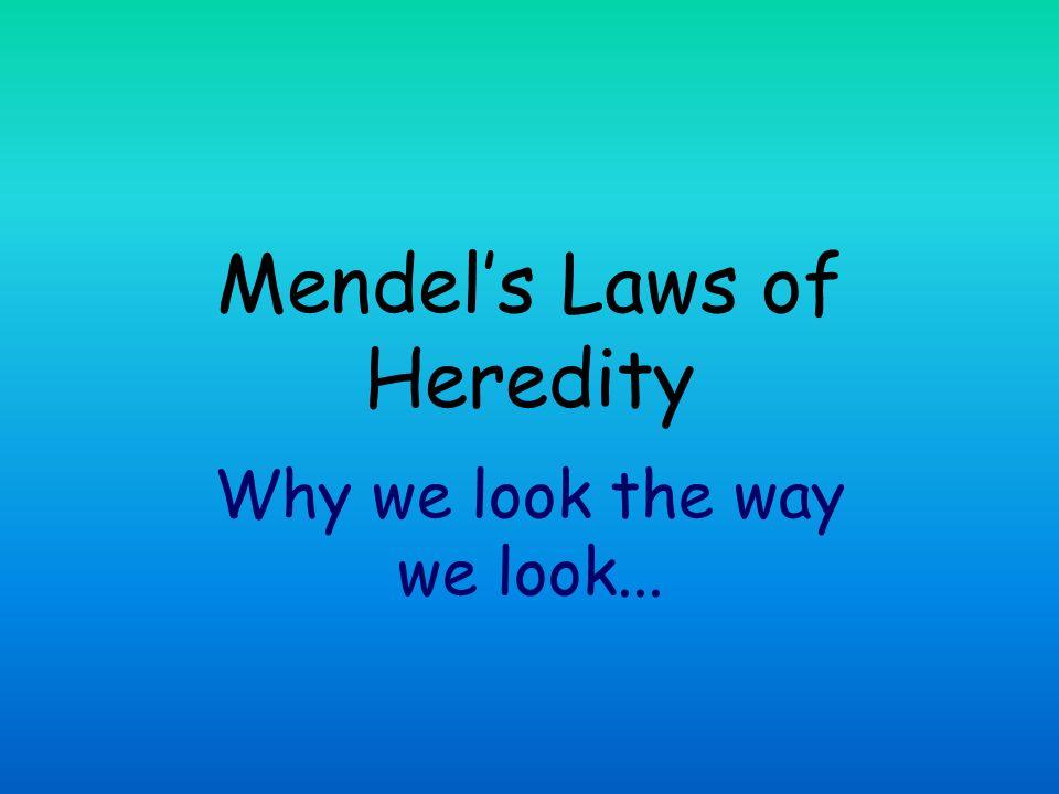 Mendel's Laws of Heredity