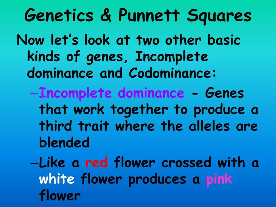 Genetics & Punnett Squares