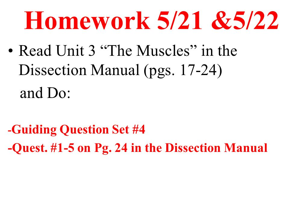 Homework 5/21 &5/22 Read Unit 3 The Muscles in the Dissection Manual (pgs. 17-24) and Do: -Guiding Question Set #4.