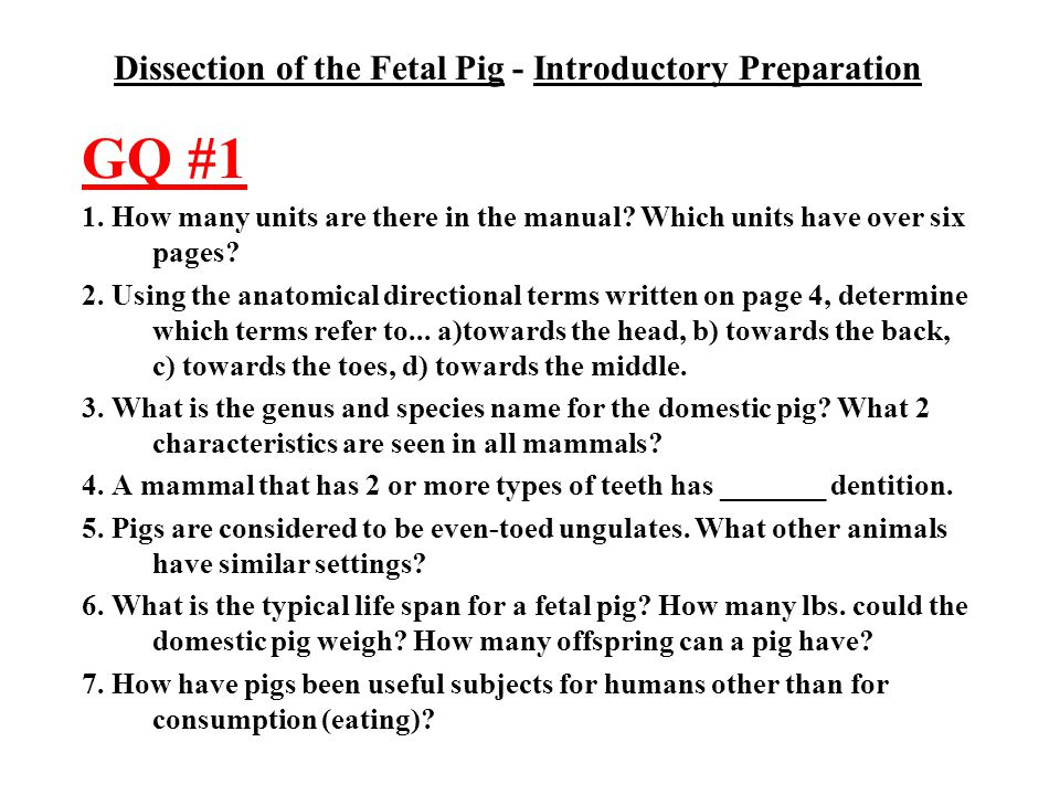Dissection of the Fetal Pig - Introductory Preparation