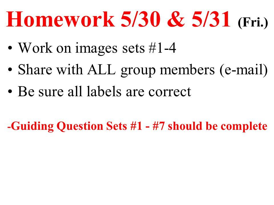 Homework 5/30 & 5/31 (Fri.) Work on images sets #1-4