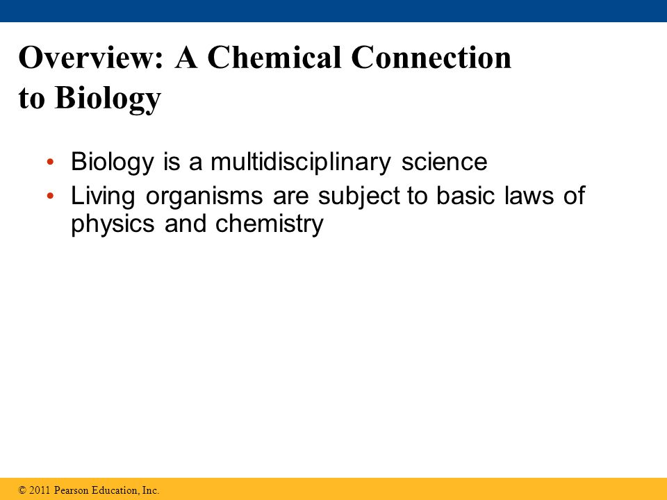 Overview: A Chemical Connection to Biology