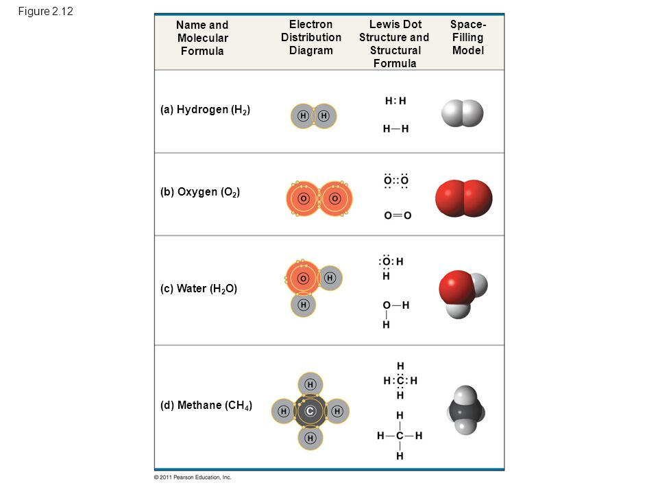 Figure 2.12 Name and. Molecular. Formula. Electron. Distribution. Diagram. Lewis Dot. Structure and.