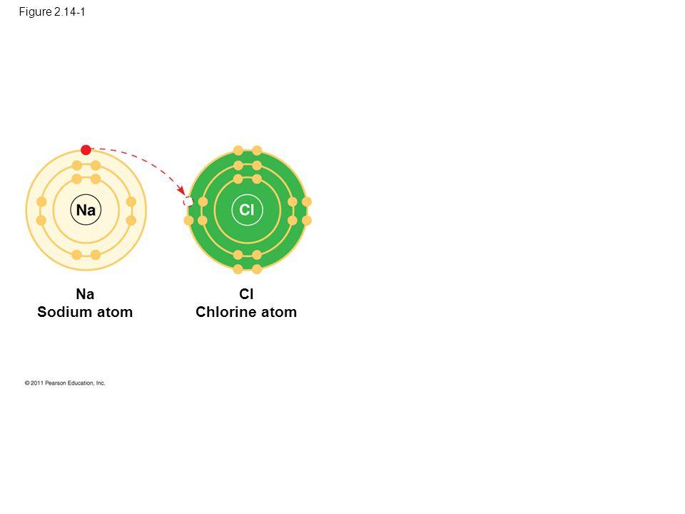 Na Sodium atom Cl Chlorine atom