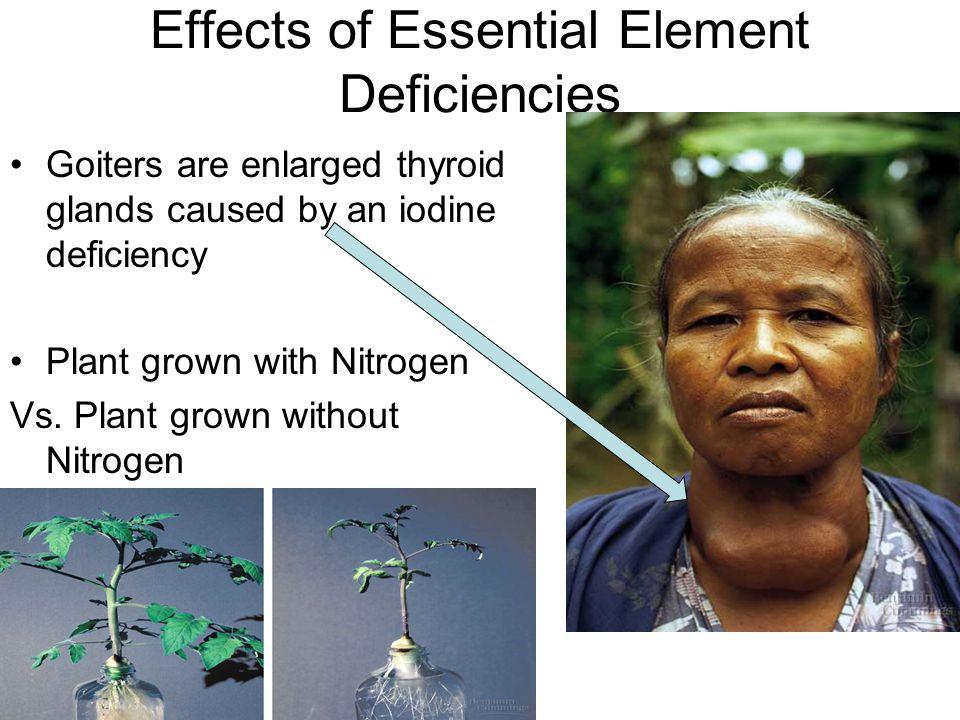 Effects of Essential Element Deficiencies