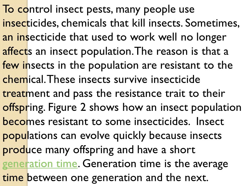 To control insect pests, many people use insecticides, chemicals that kill insects.