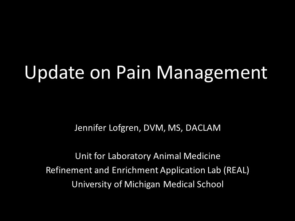 Update on Pain Management