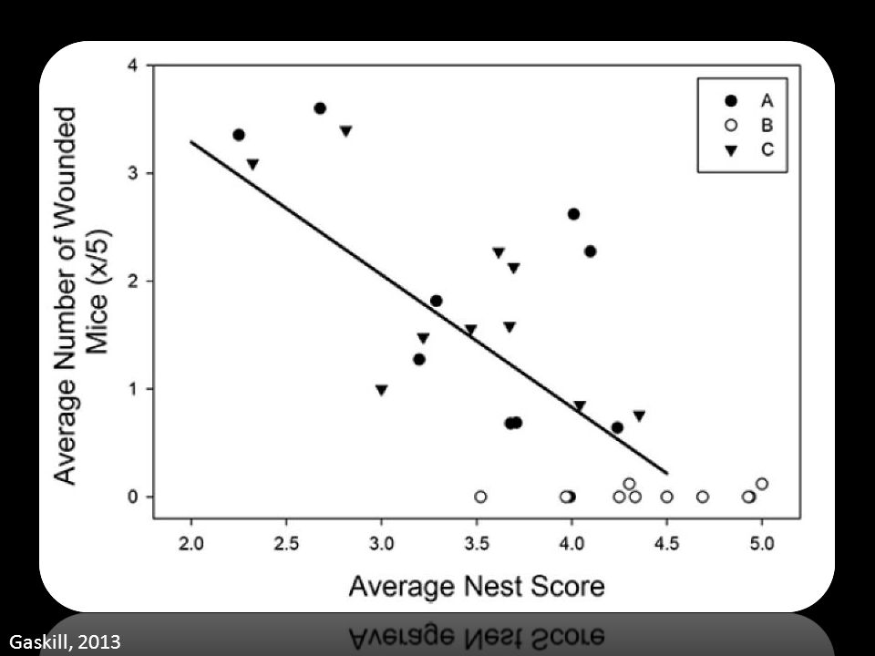 Nest Score The effect of aggression on nest scores. This graph depicts the correlation between the average nest score of a cage with 5 male.
