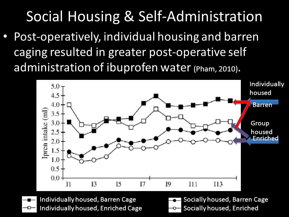 Social Housing & Self-Administration