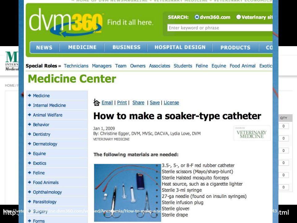 Regional Analgesia http://veterinarymedicine.dvm360.com/vetmed/Anesthesia/How-to-make-a-soaker-type-catheter/ArticleStandard/Article/detail/591543.